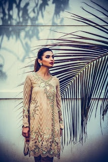 nadia farooqui ready to wear women fall winter dresses Collection 2018-19-12