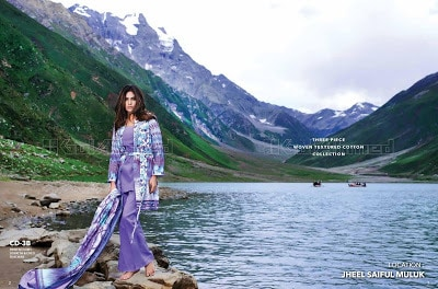gul-ahmed-embroidered-chiffon-fall-winter-dresses-collection-2016-17-3