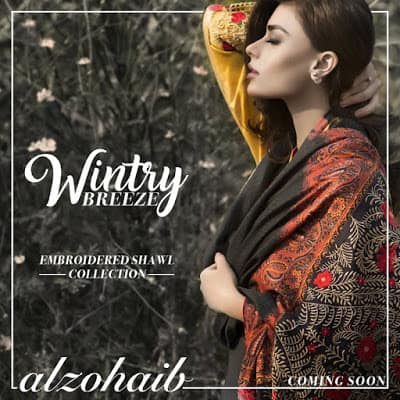 Al-Zohaib-wintry-breeze-embroidered-shawl-collection-2017-for-women-2