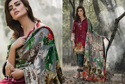 Al-Zohaib-wintry-breeze-embroidered-shawl-collection-2017-for-women-12