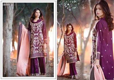 areeba-saleem-new-embroidered-designs-winter-dresses-2017-by-zs-textiles-16