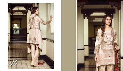classy-and-stylish-shahmina-imperial-winter-silk-dresses-collection-2017-9
