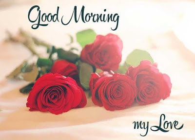 Sweet good morning love messages with flower Images