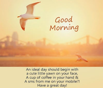 Good-morning-my-love-quotes-messages-and-images-16