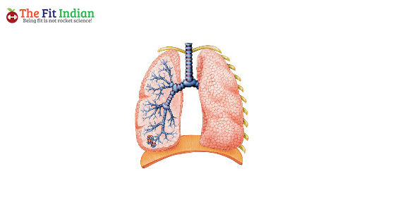 Bronchitis reason for chest congestion