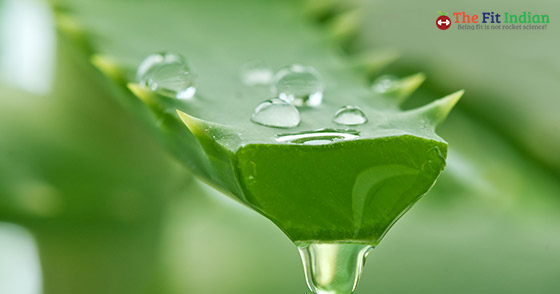 ApplyAloe Vera for belly button infection